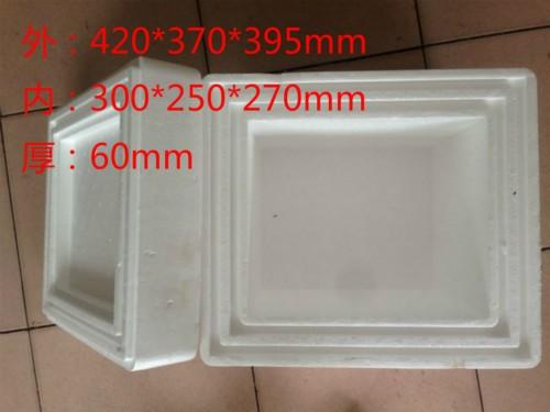 加厚15公斤干冰容量泡沫箱